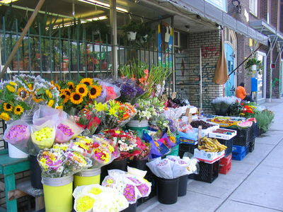 GIFT AND FLOWER SHOP FOR SALE IN NORTH YORK