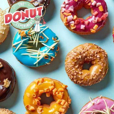 Donut Experiment Donut Shop Franchise Opportunity