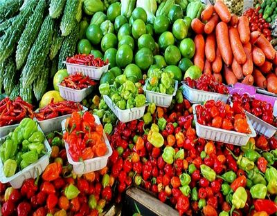 Successful Produce and Nursery Market with Real Estate for Sale