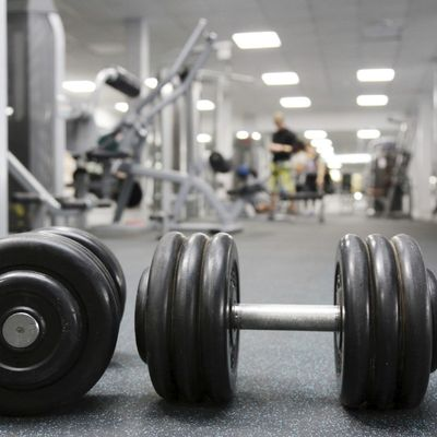 Profitable Fitness Facility for Sale in Toronto