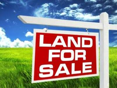 Approx 24.82 Acres of Land for Sale in Menchanton, Ontario