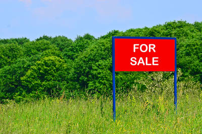 12 ACRES Prime Residential Land for Sale - KING CITY