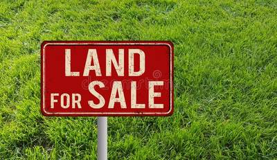 150 Acre Vacant Land Hearst