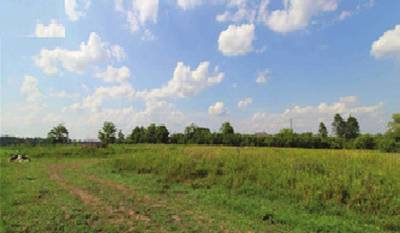 FARM LAND FOR LEASE IN PICKERING