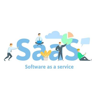 Profitable Software as a Service (SaaS)  Businesses