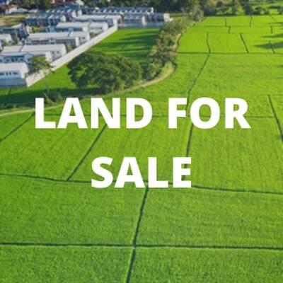 4 Acres of Prime Development Land for Sale in GTA