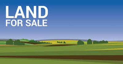 36 Acre Residential Development Opportunity in Mildmay,Bruce County,ON